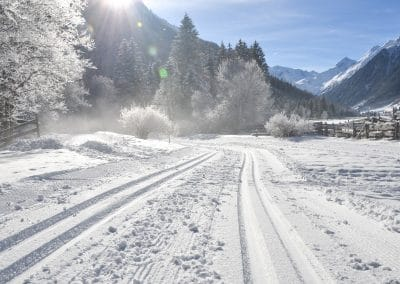 Langlaufen im Gschnitztal - Trins - Wipptal